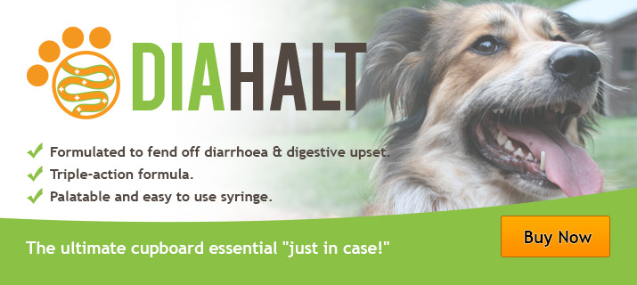 New DiaHalt from VioVet!