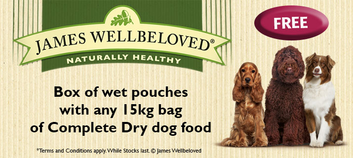 Free wet food with JWB food