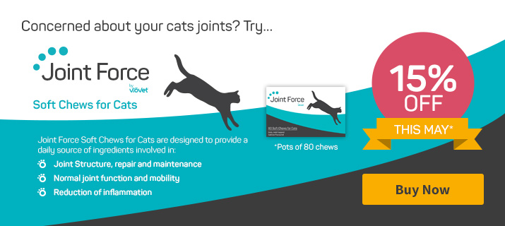 Joint Force Soft Chews for Cats
