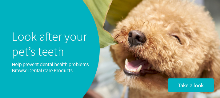 Dental products for your pets!