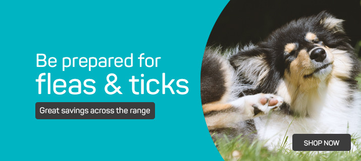 Be prepared for fleas and ticks
