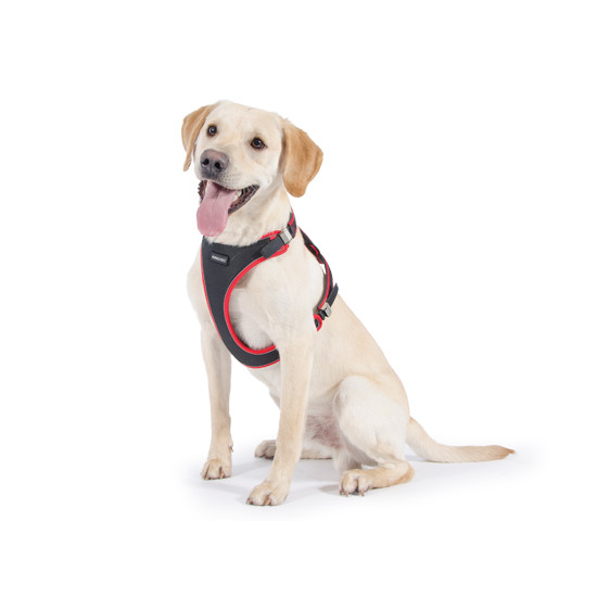 Ancol Easy Fit Comfort Harness for Dogs
