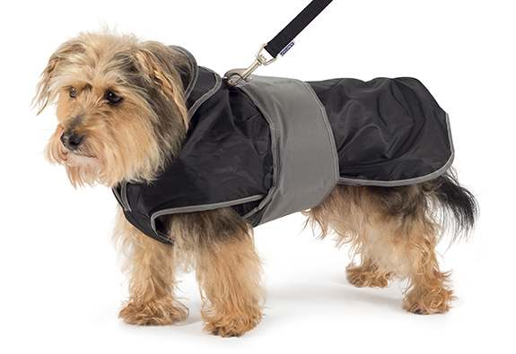 Ancol Muddy Paws 2 in 1 Harness Coat
