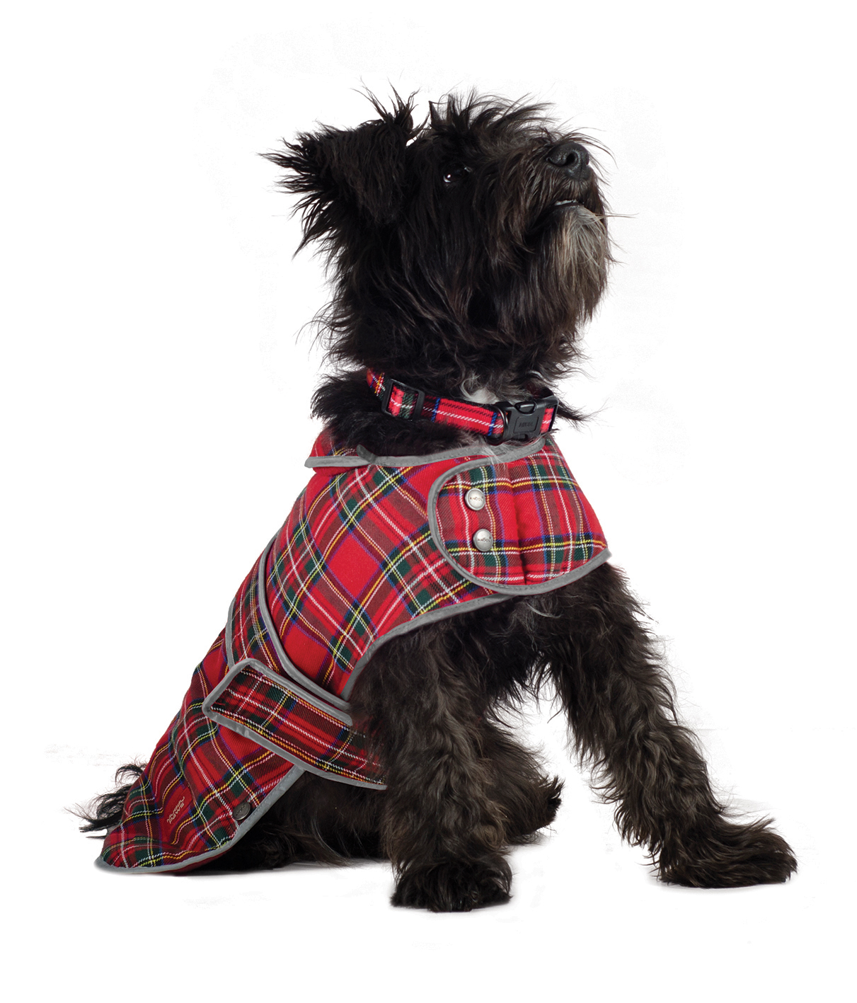 Ancol Muddy Paws Highland Tartan Coat