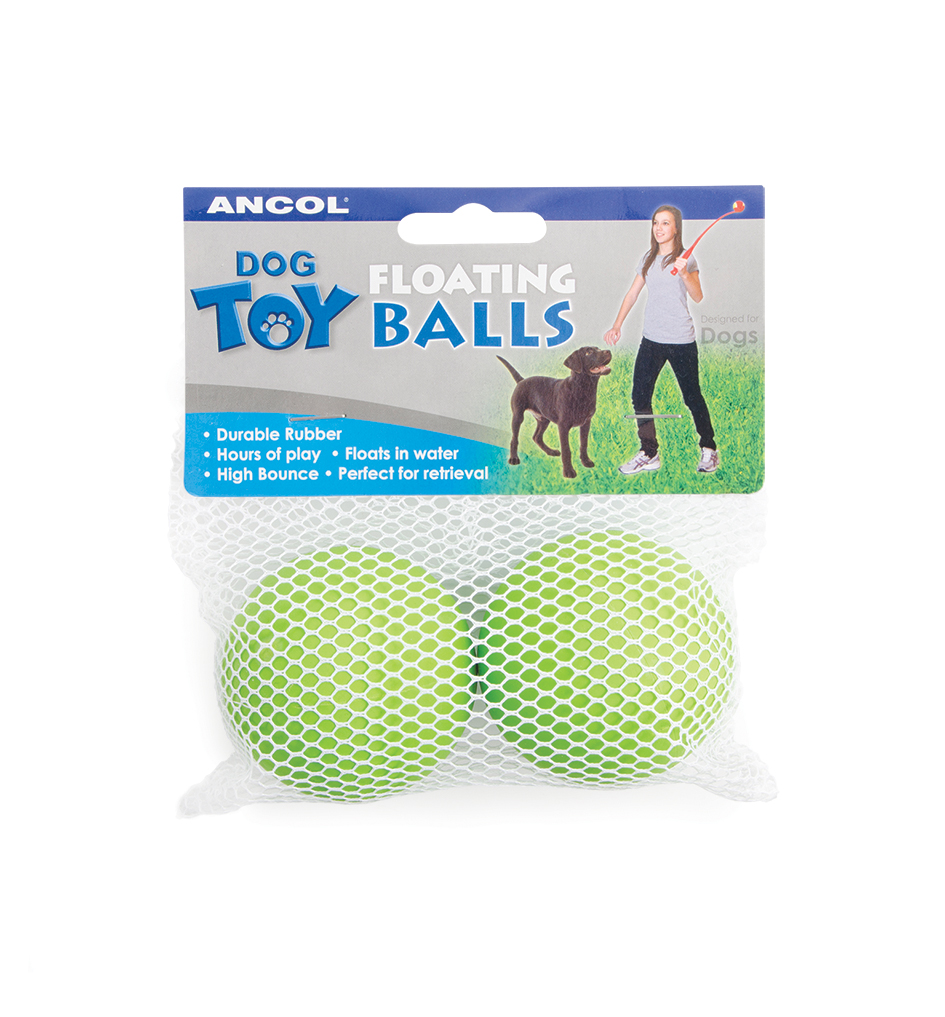 Ancol Assorted Floating Balls for Dogs
