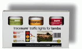 Animax Tracesure Traffic Lights for Lambs