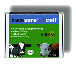Animax Tracesure-I Bolus for Calves