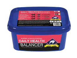 Blue Chip Super Concentrated Daily Health Balancer