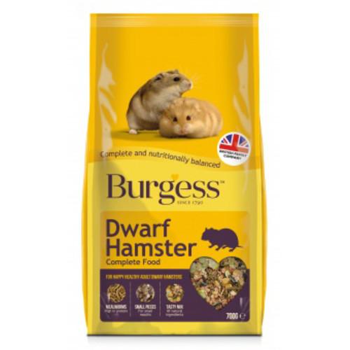 Harry hamster dating