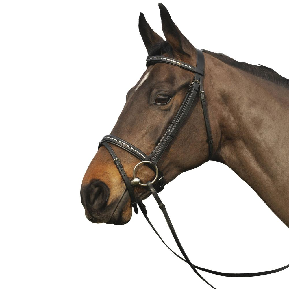 Caldene Crystal Flash Bridle with Reins