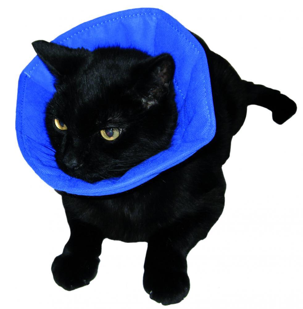 Cat Cone Collars Uk