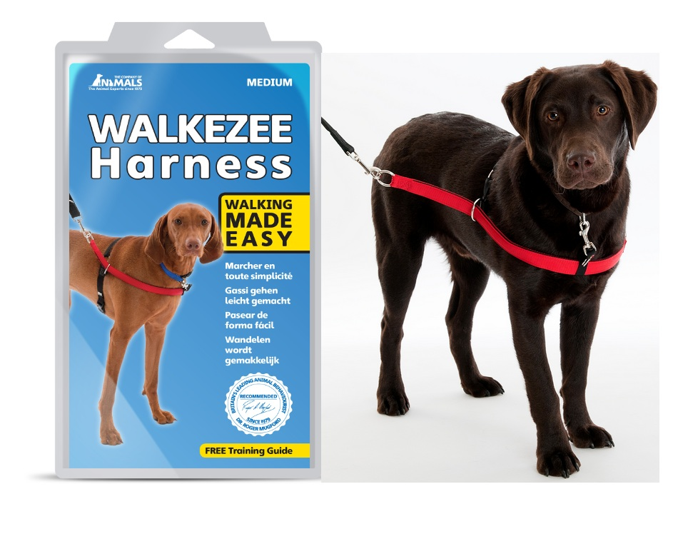 Company of Animals Walkezee Dog Harness