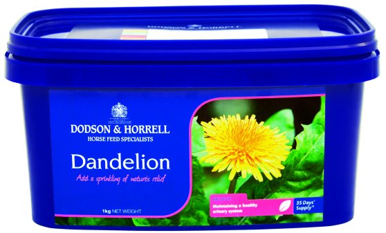 Dodson & Horrell Dandelion for Horses