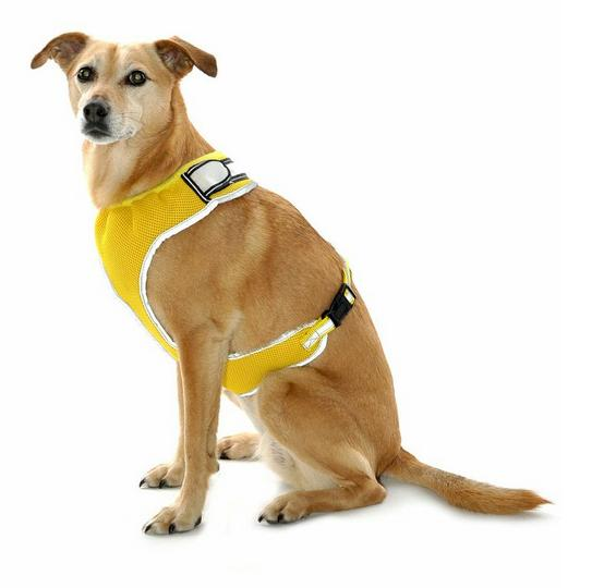 Equisafety Flashing Dog Harness