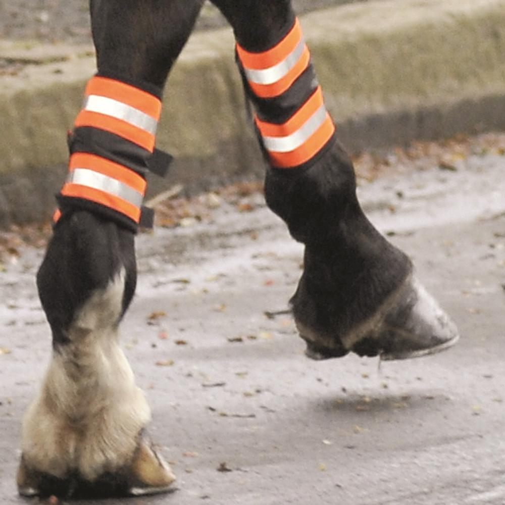 Equisafety Reflective Leg Bands