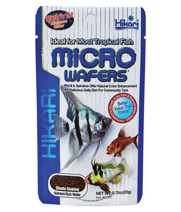 Hikari micro wafers fish food for Hikari fish food