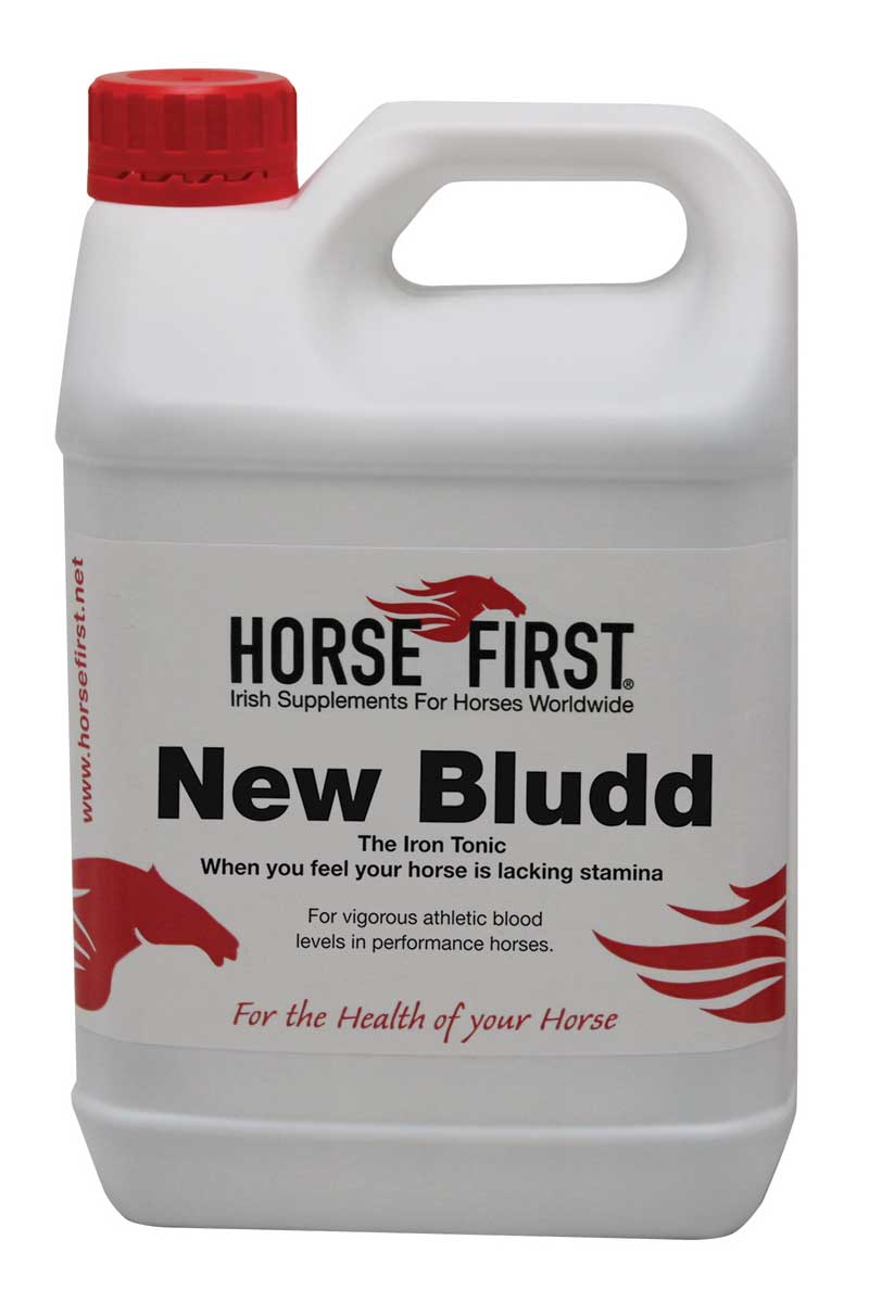 Horse First New Bludd for Horses