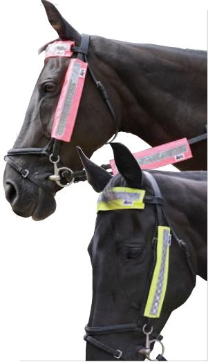 HyVIZ Reflective Bridle Set
