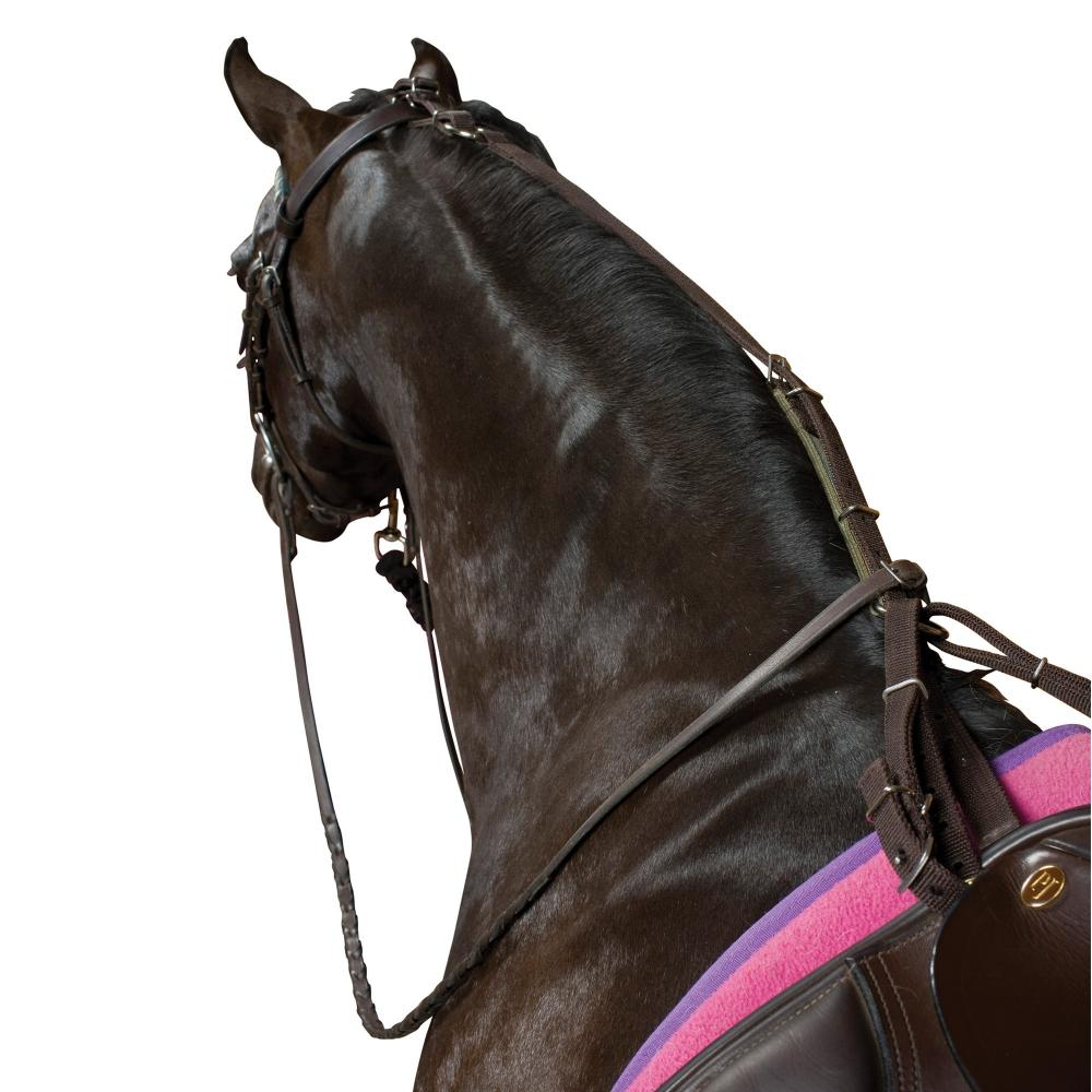 Kincade Anti Grazing Straps