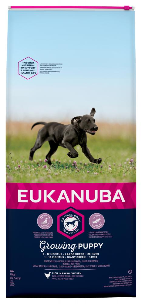 Eukanuba Large Breed Chicken Puppy Food