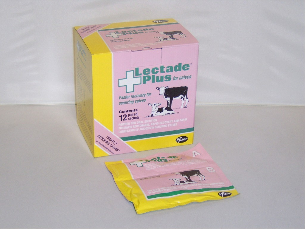 Lectade Plus Large Animal Sachets