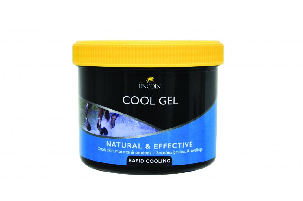 big sale b2f77 bd9a0 Lincoln Cool Gel for Horses