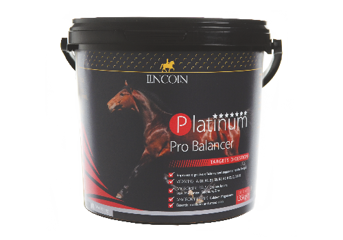 Lincoln Platinum Pro Balancer