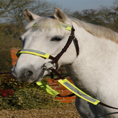 LunaRider Reflective Bridle Kit