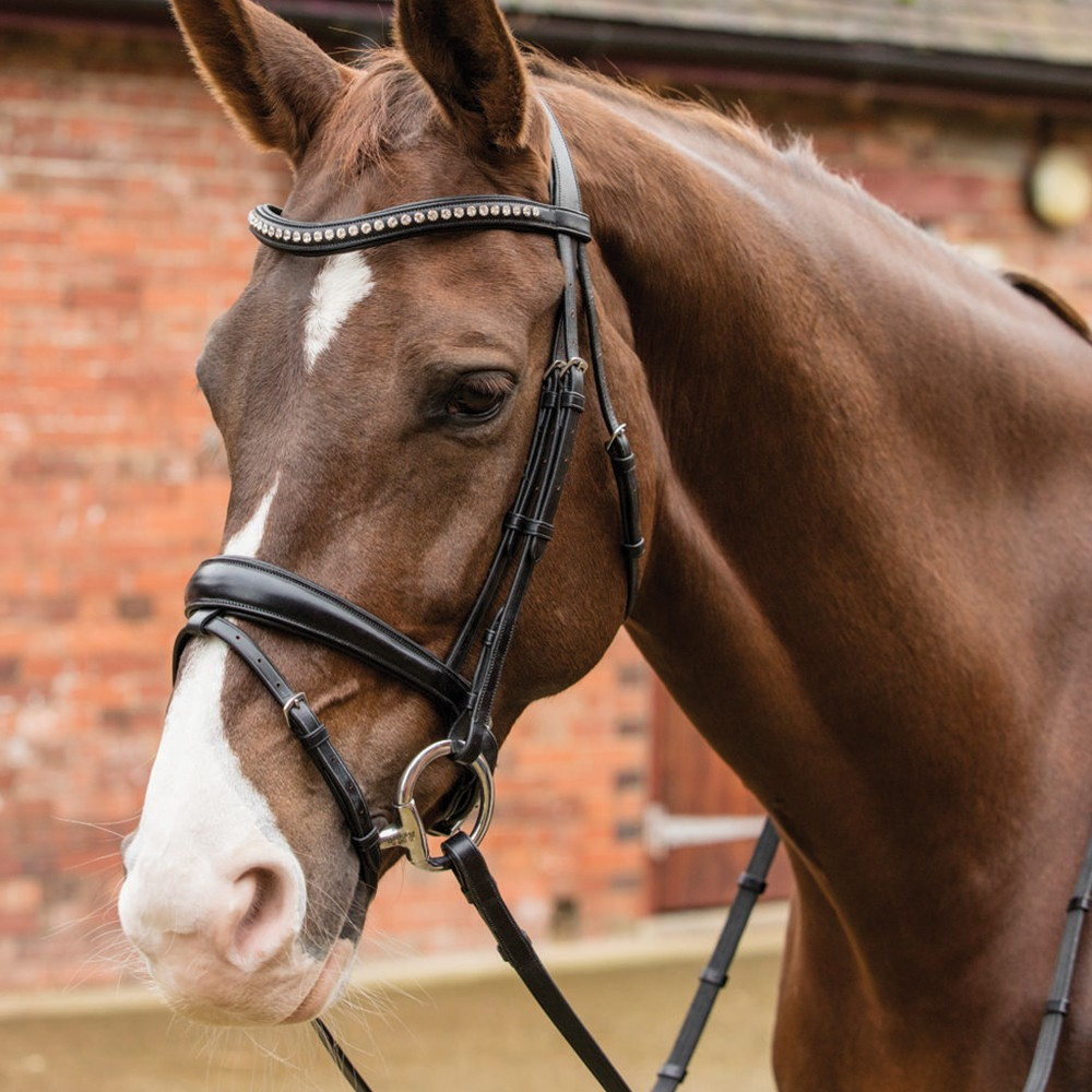 Mark Todd Crystal Dressage Bridle