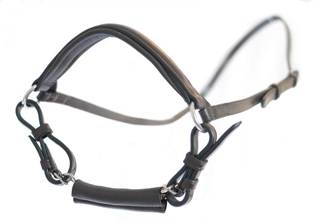 Mark Todd Drop Noseband with Chain