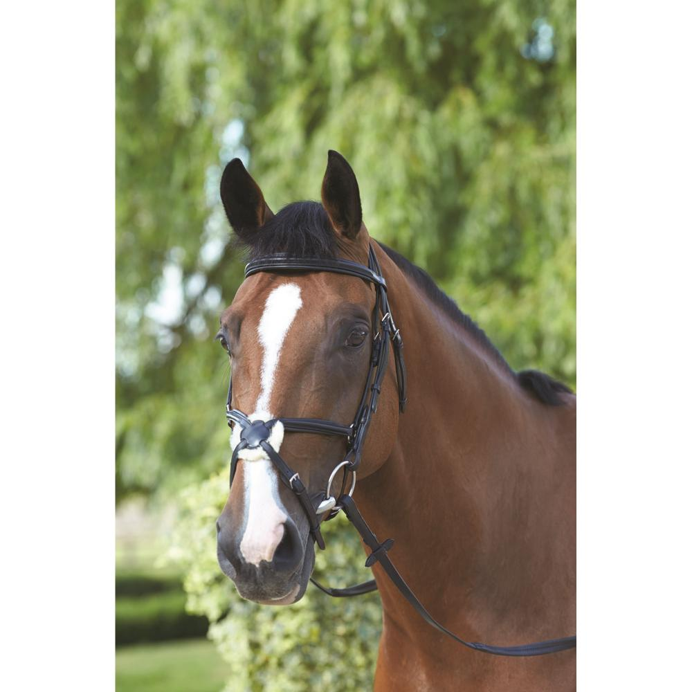 Mark Todd Padded Grakle Bridle