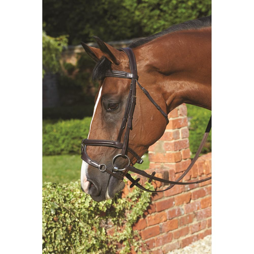 Mark Todd Performance Noseband attachment