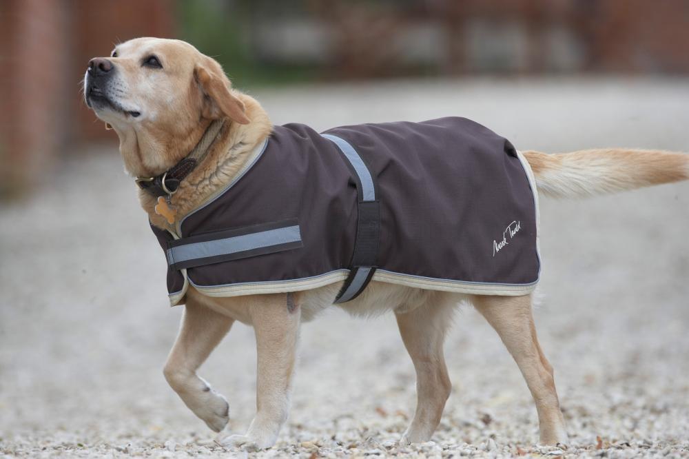 Mark Todd Waterproof Dog Coat