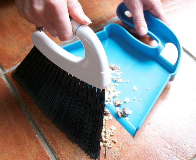 Hill Brush Mini-Sweep Dustpan And Brush