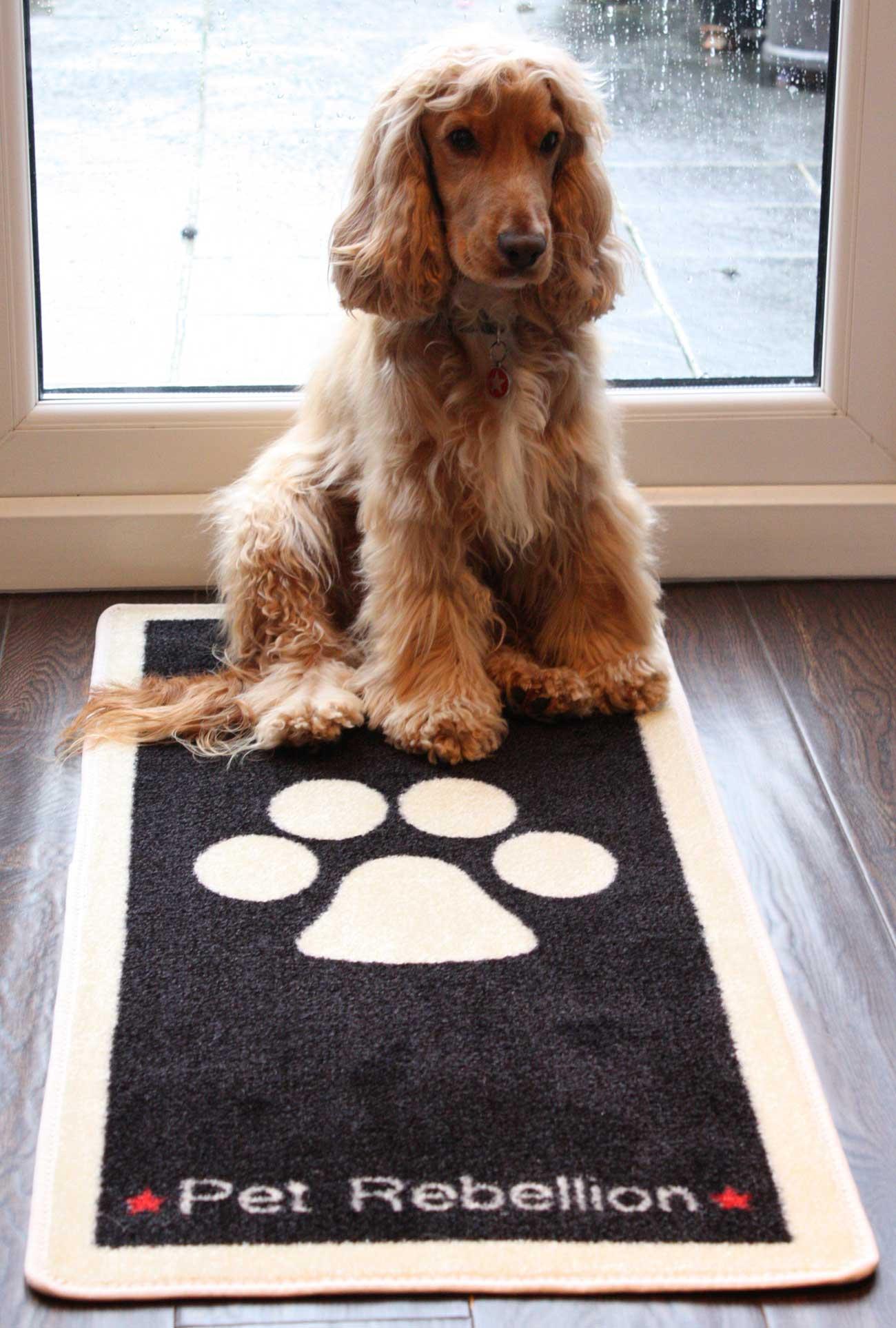 Stop Muddy Paws Mat Pets At Home