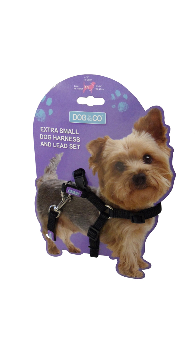 puppy amp co small dog harness set