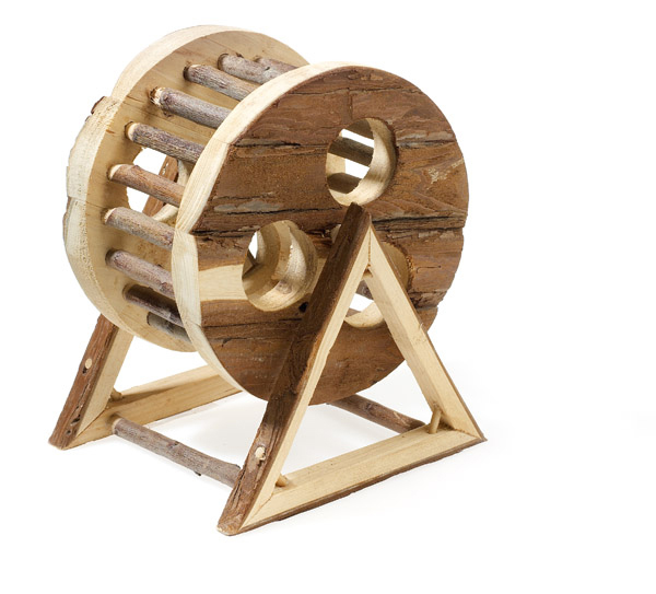 Classic Rustic Wooden Exercise Fun Wheel