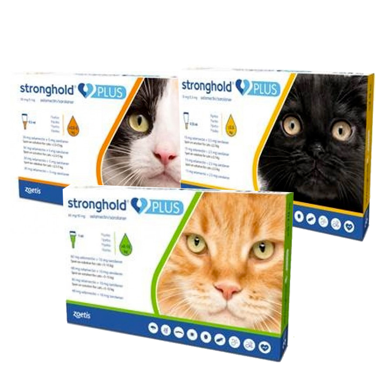 Stronghold Plus spot-on solution for cats