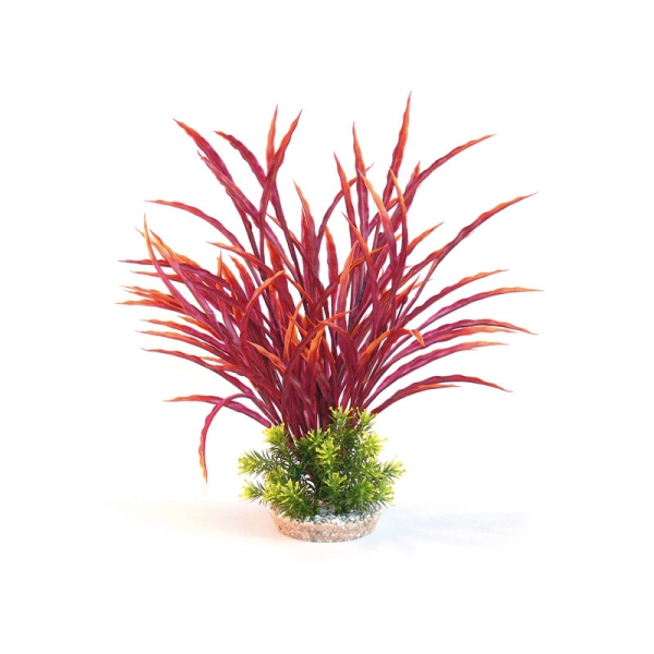 Sydeco Natural Atoll Maxi Aquarium Plant