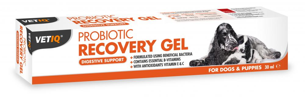 VetIQ Probiotic Recovery Gel For Dogs