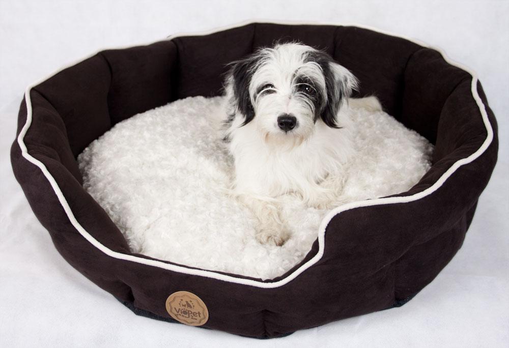 VioPet Ziggy's Zzz 🐶 Dog Bed