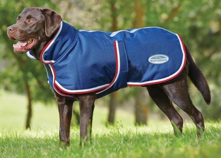 weatherbeta dog coat