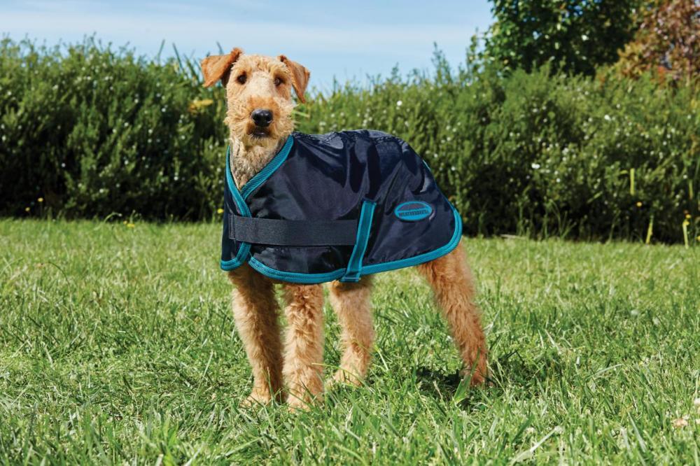 Weatherbeeta Dog Coats Uk