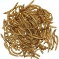 Albert E James Dried Mealworms