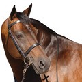Caldene Plain Snaffle Bridle with Plain Reins