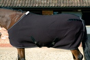 Mark Todd Coolex Horse Rugs Cooler