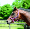Cottage Craft Galaxy Headcollar