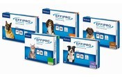 Effipro Spot On Flea Treatment for Dogs & Cats
