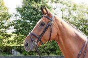 John Whitaker International Flash Bridle Barton