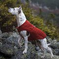 Kurgo Loft Jacket for Dogs Chilli Red & Charcoal